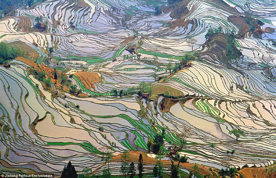 Stunning: Hani Terraces are located at Yuanyang County in Honghe Prefecture, Yunnan Province