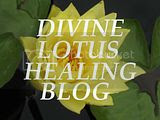 Divine Lotus Healing Blog Button