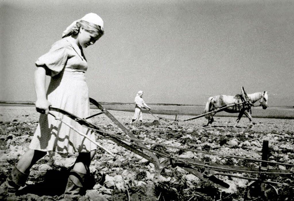 Колхозница колхоза «Заря» ученица 7-го класса Т.Пестова за вспашкой паров. 1943 г. Кировская область.
