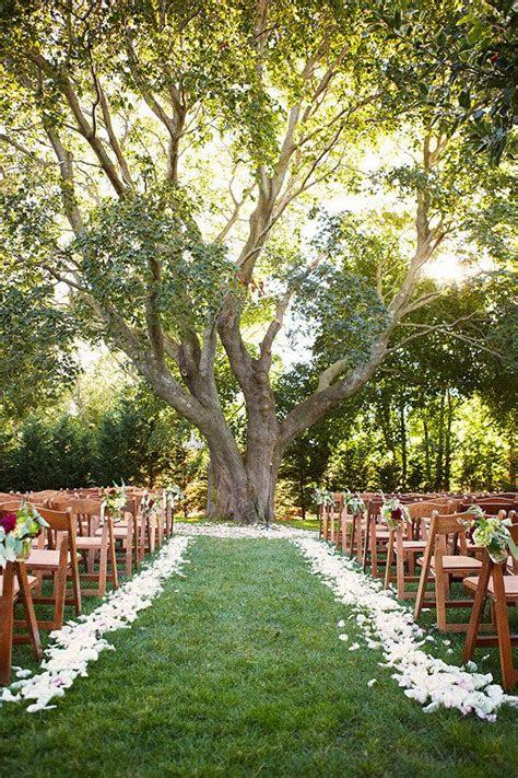 tree wedding ceremonies ideas