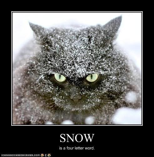 Funny Snow Quote | Quote Number 689922 | Picture Quotes