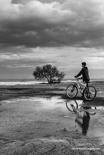 Camino by Alfredo Romero Fotografias 