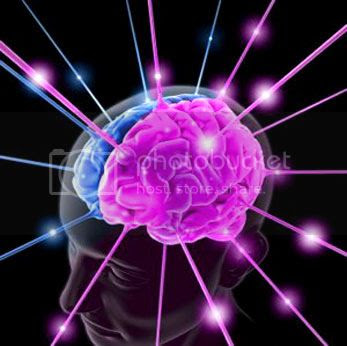 Brain Pictures, Images and Photos