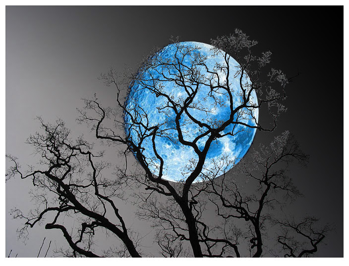 Full Moon, Blue Moon