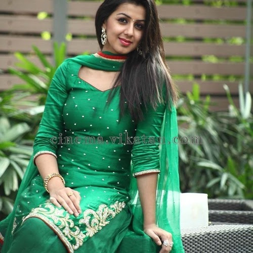 Nikki Galrani Rising Indian Film Actress and Model most hottest and sexiest stills