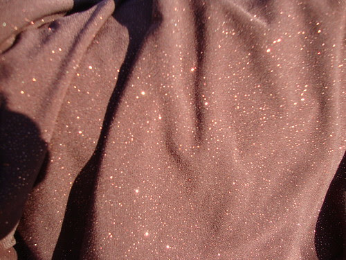 gorgeously sparkly fabric I bought