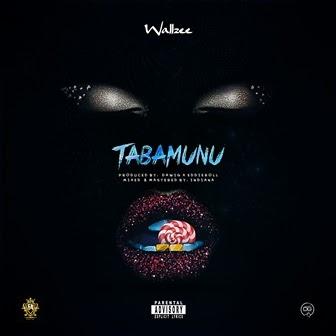 [BangHitz] Music: Wallzee - Tabamunu