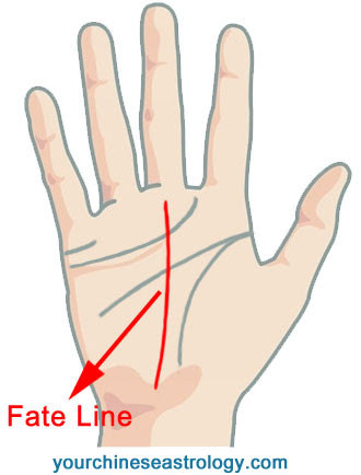 Palm Reading - Fate Line