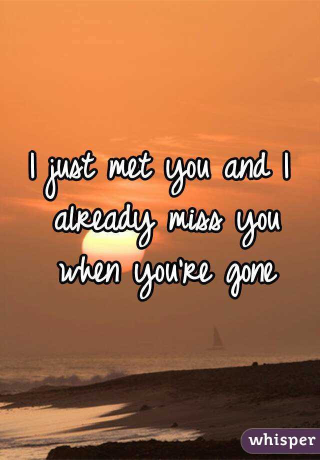 I Just Met You And I Already Miss You When Youre Gone