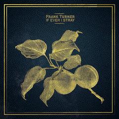 Frank Turner - If Ever I Stray