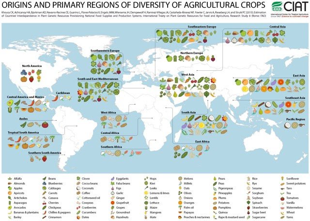 http://kottke.org/16/06/world-map-of-the-origin-of-agricultural-crops