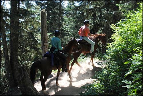 Horseback Riders on Paradise Park Loop trail - Mt. Hood