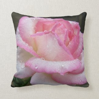 Beautiful Pink Rose with Raindrops Throw Pillow