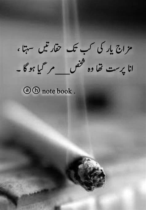 What is the Meaning of tobacco in Urdu - DriverLayer