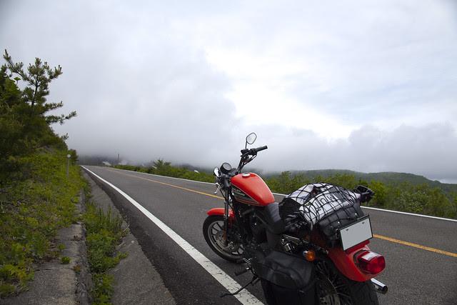 Harley Davidson XL 883R 057