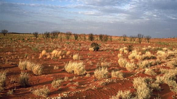 """Résultat de recherche d'images pour """"La plus grande propriété agricole d'Australie"""""""