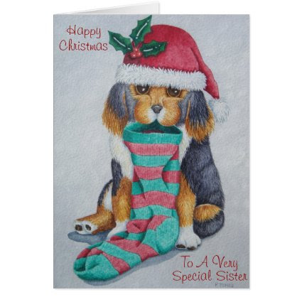 cute black and brown puppy with christmas stocking cards