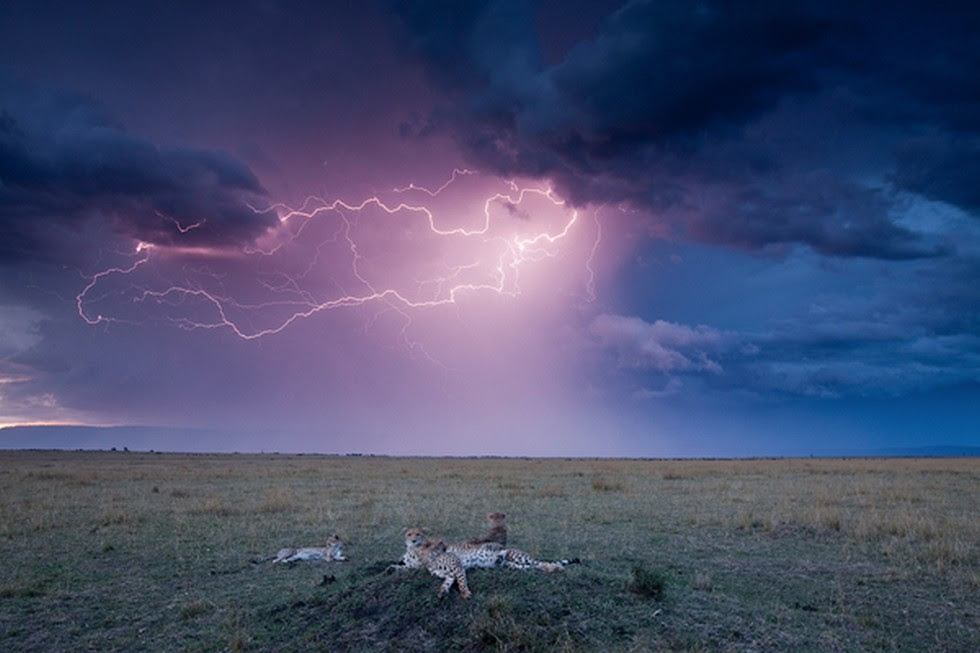Молния в пустыне