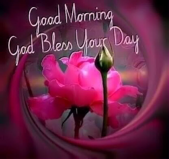 Good Morning God Bless Your Day Pictures Photos And Images For