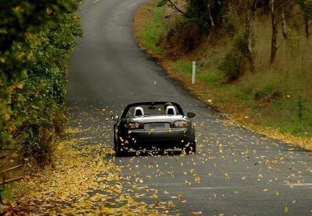 autumn b-road