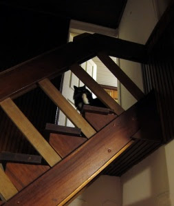 foot-stairs1