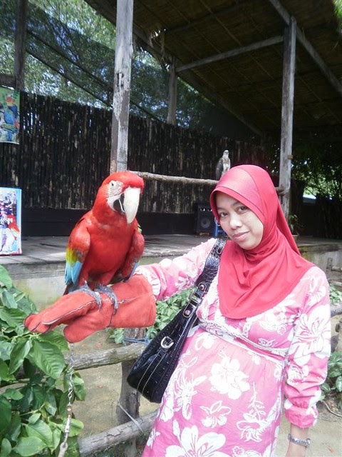 Penang Bird Park 020 (Large)