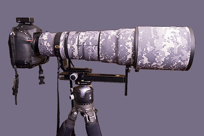 Nikon D4 with Nikkor 500mm lens on tripod with ball head and long lens support