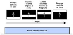 flash FP.jpg