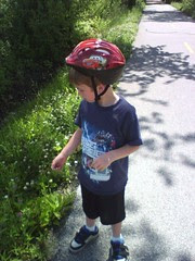 Picking flowers along the trail.