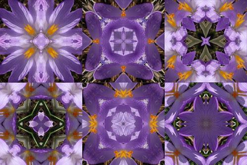 Spring Mandalas