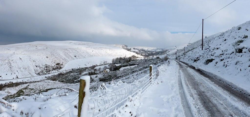 29201 - Snowy Scenes