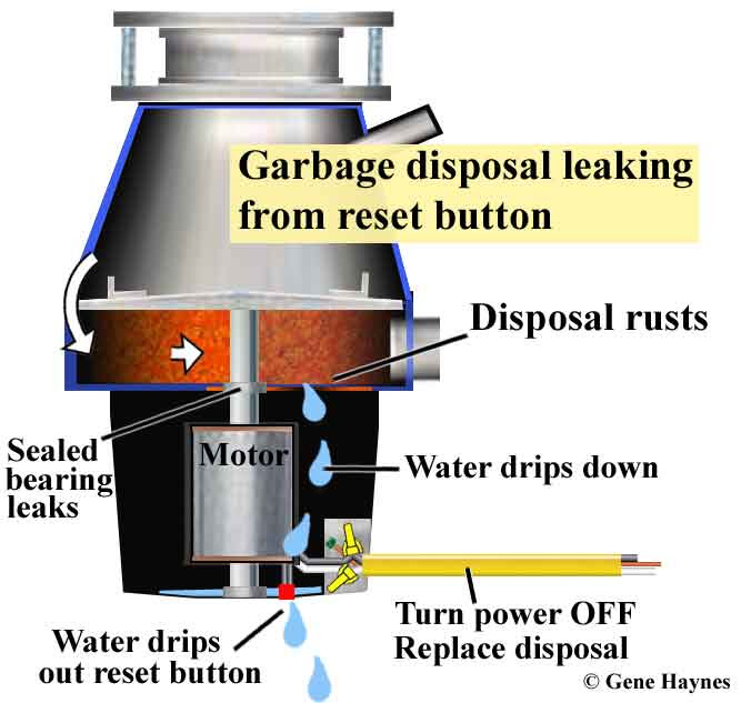 Install Bifold Doors New Construction Garbage Disposal Seal Repair
