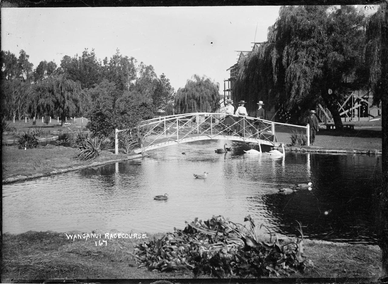 View of the gardens behind the Wanganui Racecourse, with swans on a lake