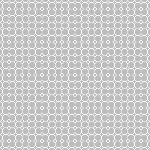 20-cool_grey_light_NEUTRAL_medium_octagon_solid_12_and_a_half_inch_SQ_350dpi_melstampz