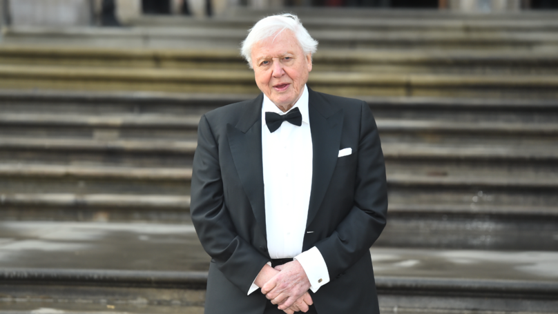 David Attenborough Says He Hasn't Got Many Years Left As He Urges Others To Fight Climate Change