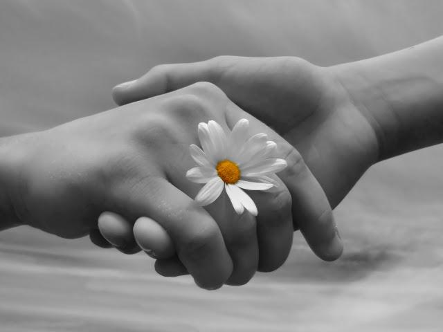 http://areacomunicazione.policlinico.unina.it/wp-content/uploads/2014/05/mani-con-fiore-donazione.jpg