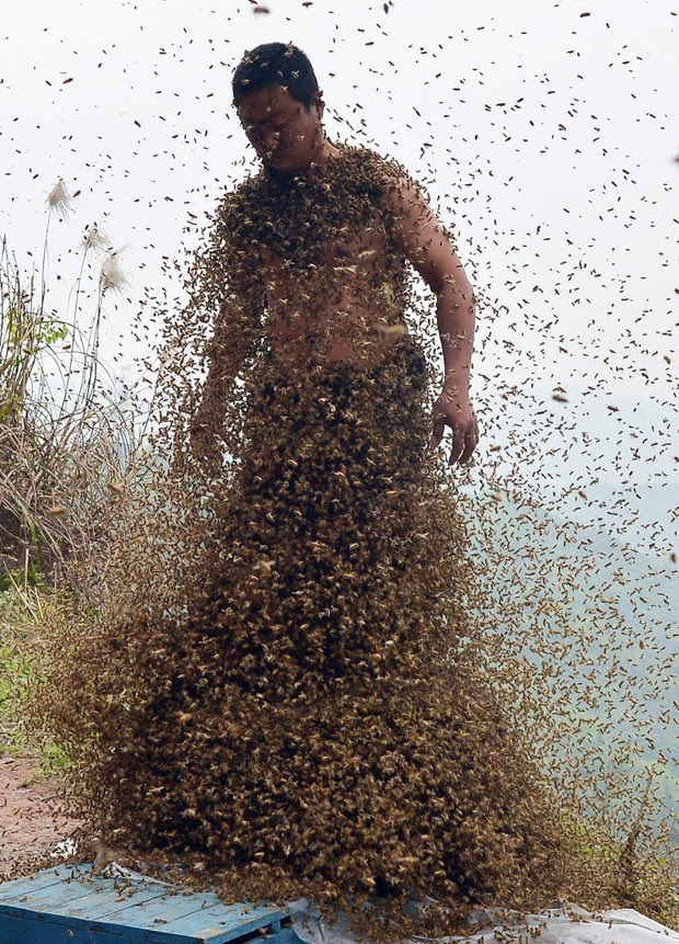 'Desafio' com abelhas foi realizado em Chongqing, na China (Foto: STR/AFP)
