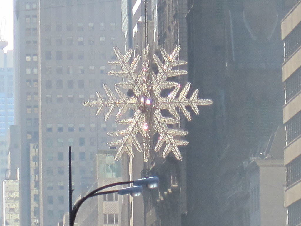 Snowflake over Fifth Avenue