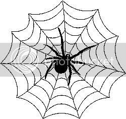 spiderweb.jpg spiders image by BRIx333