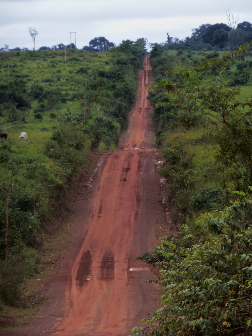 Amazonia road (Bolivia)