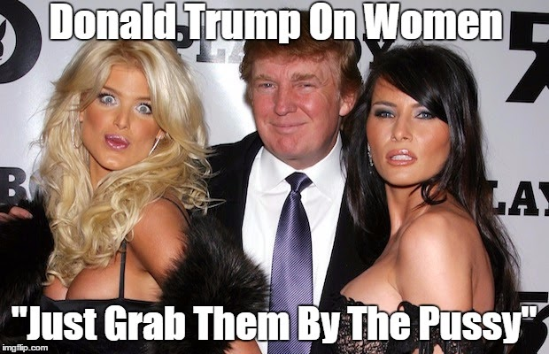 Image result for trump pax on both houses grab them by the pussy