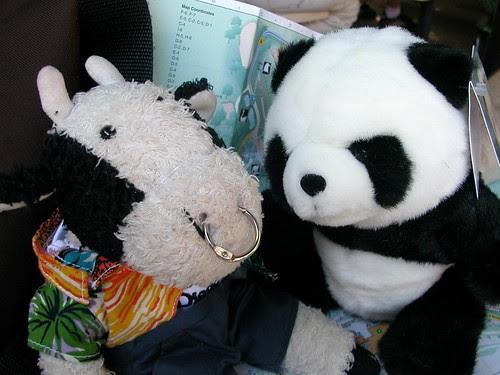 My new pandapal