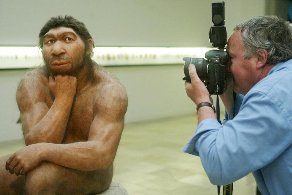 Almost human: A photographer snapped pictures of a reconstruction of a Neanderthal at a German museum in 2004.
