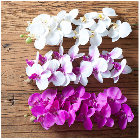 Wholesale 100pcs\/Lot Phalaenopsis Flower Real Touch Orchid
