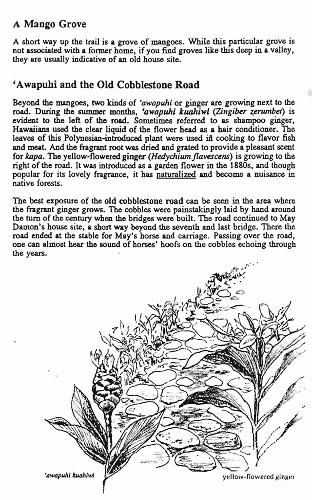 Pages from A_Walk_Into_the_Past_Page_09