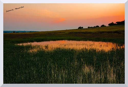Kaas Plateau @ sunset time