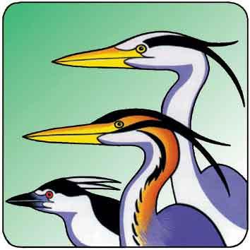 Logo del Parco Fluviale del Po e dell'Orba