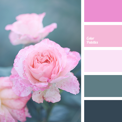 Color Palette Ideas | ColorPalettes.net