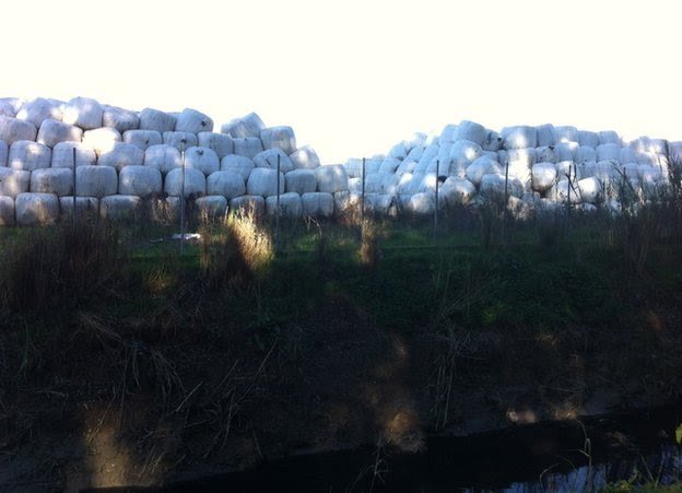 Bales of waste in Ilia