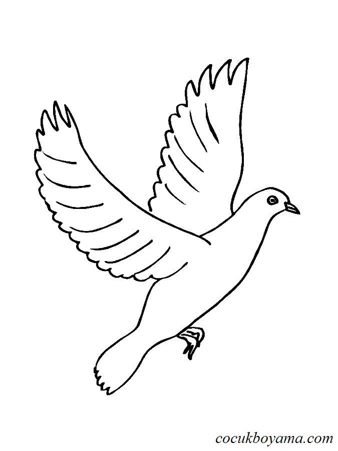 Güvercin 41 ücretsiz Boyama Resimleri